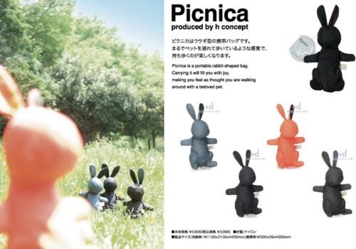 picnica2